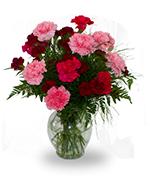 Carnation vase